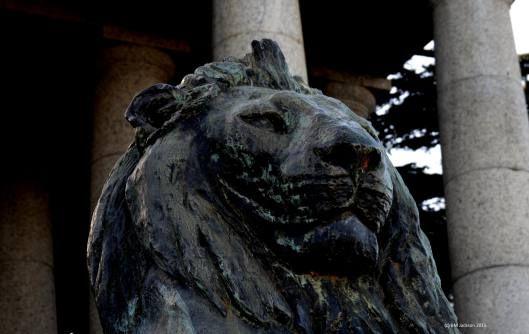 Bronze Lion at Rhodes Memorial