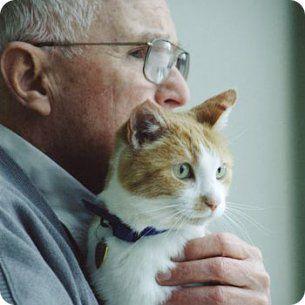 """""""Acariciar a un animal puede reducir o incluso sustituir la ingestión de medicinas: reduce el estrés y la tensión. Es el mejor relajante tanto para el perro y el gato como para su propietario"""