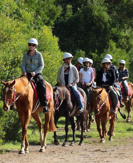 An epicurious journey on horseback - Mornington Peninsula