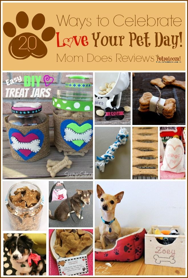love your pet day The Ultimate Pinterest Party, Week 69