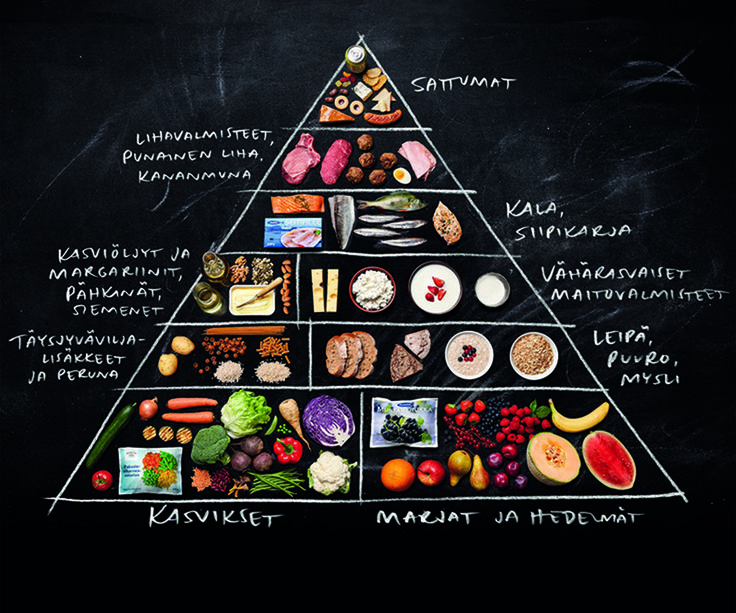 ruokapyramidi - Google-haku