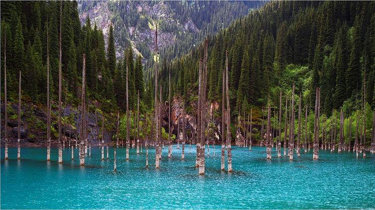 Lago Kaindy,localizado entre as montanhas Tian Shan do Cazaquistão.