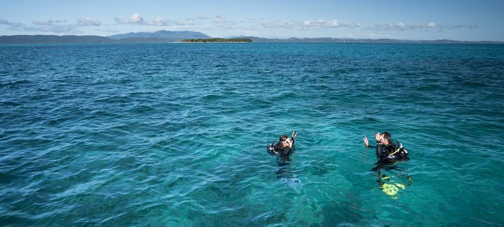 amazing dives @TsaraKomba