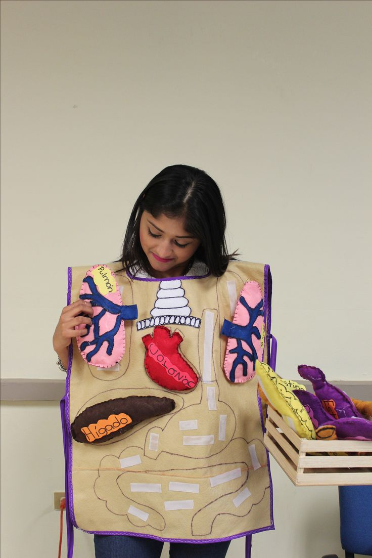 Mandil hecho de fieltro con los órganos del cuerpo hechos del mismo material. Muy ilustrativo y atractivo para los alumnos.