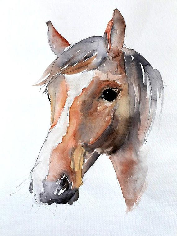 Horse Head Watercolour Print With Images Watercolor Horse