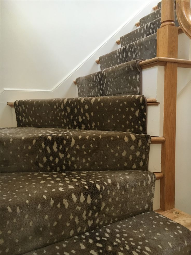 17 Best Images About Animal Print Stair Runners On