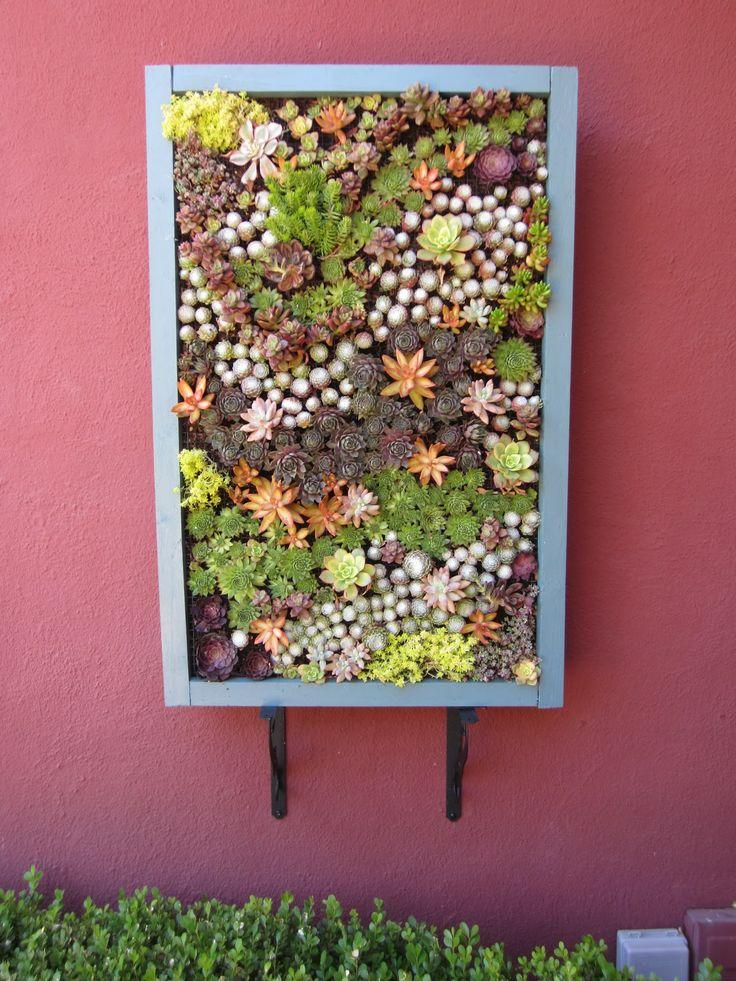 Another Green World: Vertical Succulent Panels   Part 2