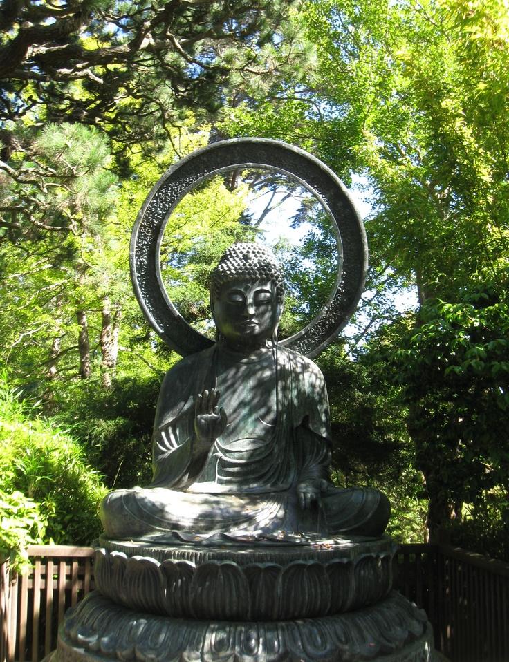 Golden Gate Park Botanic Gardens My Travels Pinterest Gardens Parks And Golden Gate Park