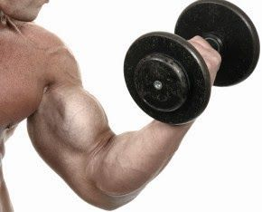 To learn the right techniques to grow muscles check out the Muscle Building Secrets of Jason Feruggia at http://musclegainingsecrets2review.blogspot.in/