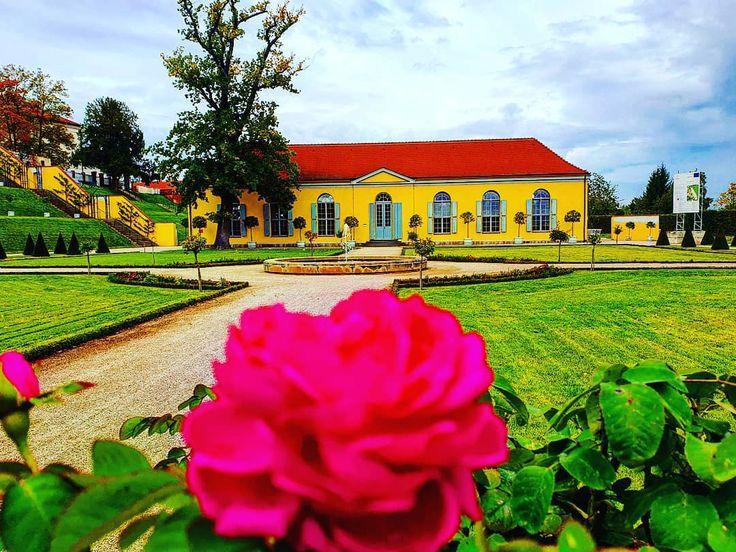 Orangerie im Klostergarten #garten #orangerie #kl…