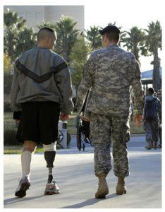 Wounded Warriors