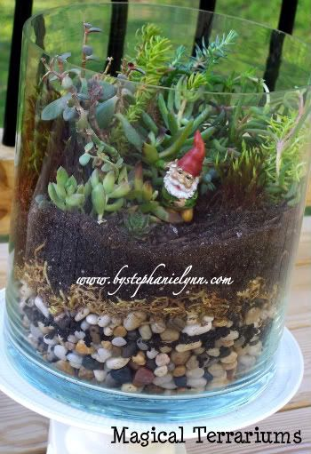 Building a Terrarium {Got Gnomes?} I think there is something so magical