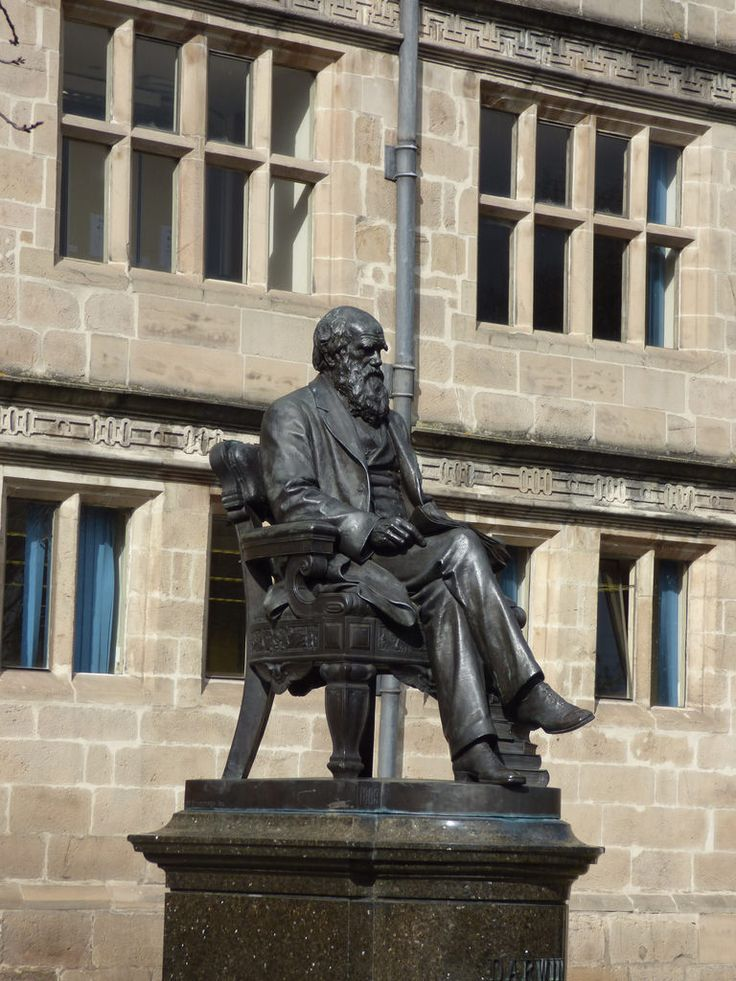 Shrewsbury - seated statue of Charles Darwin   https://c2.staticflickr.com/2/1540/25466955221_e5c2902000_b.jpg