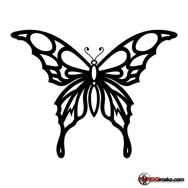 Line Drawing Butterfly Tattoo : Tribal butterfly tattoos bing images line drawings
