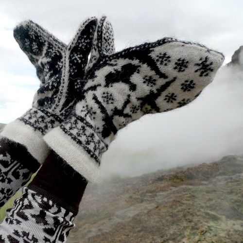 Ravens in snow « The Icelandic Knitter