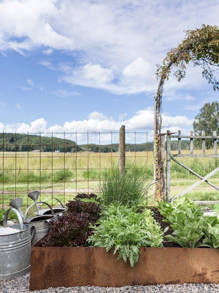 Två goa tjejer Marie och Viktoria har tillsammans Trip2Garden där de turas om att öppna upp sina vackra trädgårdar. I år är första gång...