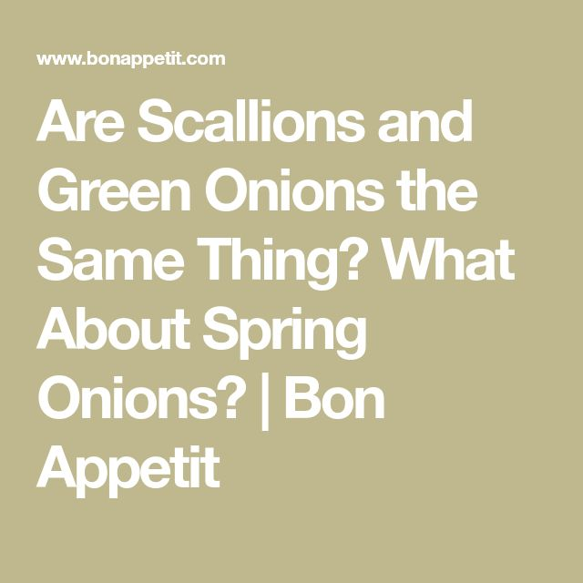 Are Scallions and Green Onions the Same Thing? What About Spring Onions? | Bon Appetit