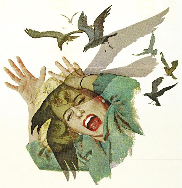 I used to have this up in my bedroom. trying to decide if it is appropriate for my home now. birds movie poster
