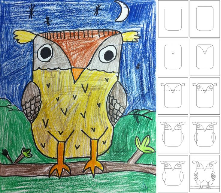 Cute owl drawing...draw according to the steps in each box...trace drawing in black marker...fill in with crayons or colored pencils. Might even be a good idea with watercolors too!