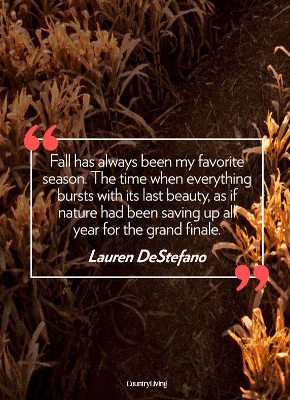 So true! Fall is the best <3