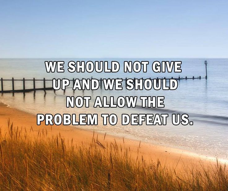 We should not give up and we should not allow the problem to defeat us. #SundayMotivationals #WillowsKitchens