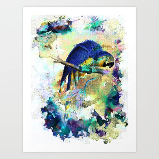 Parrot Bird - Art Print