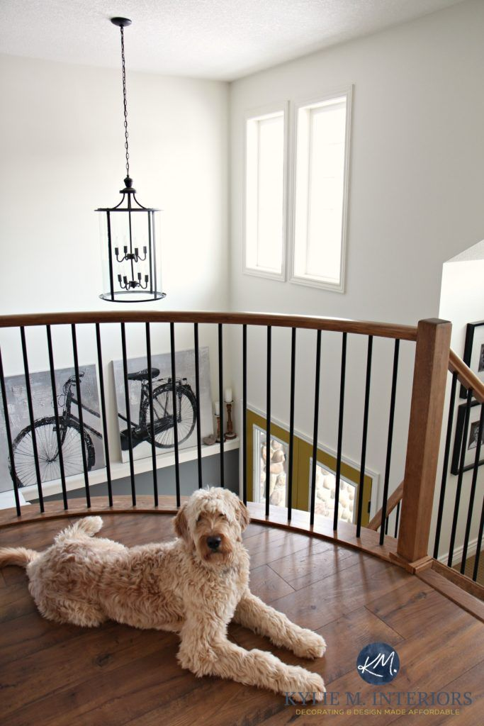 curved landing at the top of the stairs with chandelier golden doodle and sherwin williams - Beste Ausere Hausfarben