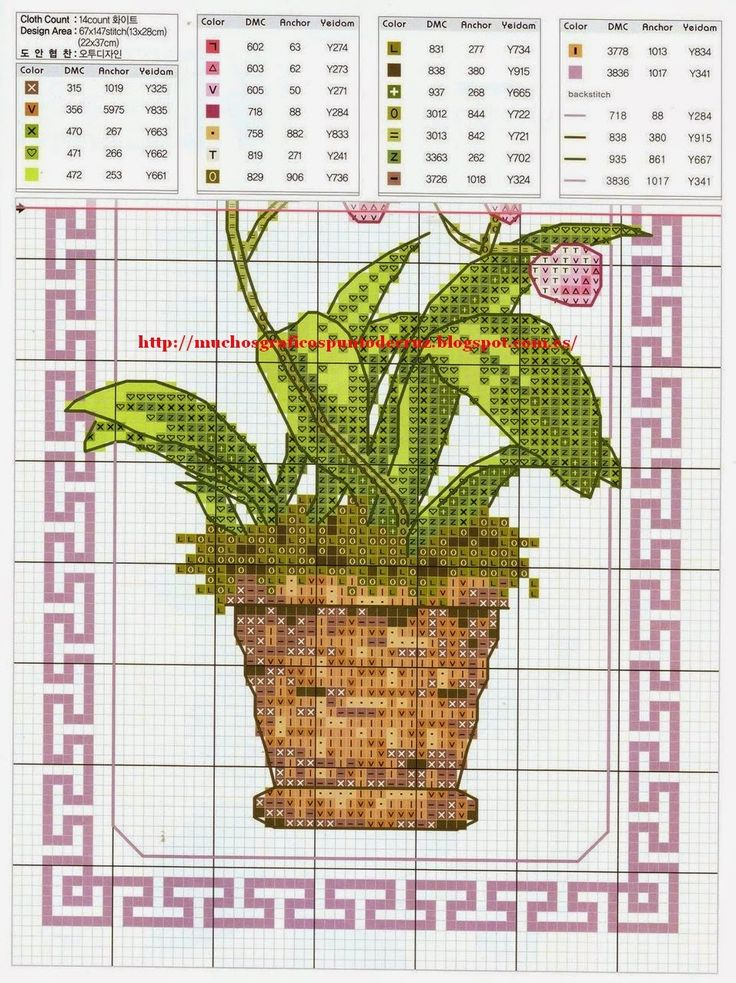 maceta-orquideas-2.jpg (956×1278)