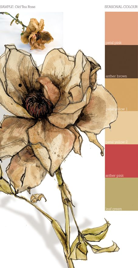 Tea rose. Delicate... realism. Fragrance; self & adolescence. Yellow; friendship & remembrance. Location; inner right.