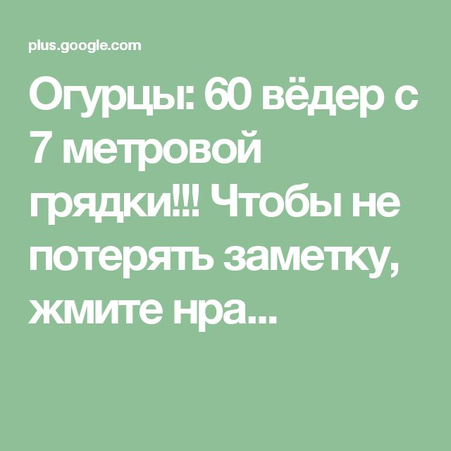 Огурцы: 60 вёдер с 7 метровой грядки!!!  Чтобы не потерять заметку, жмите нра...
