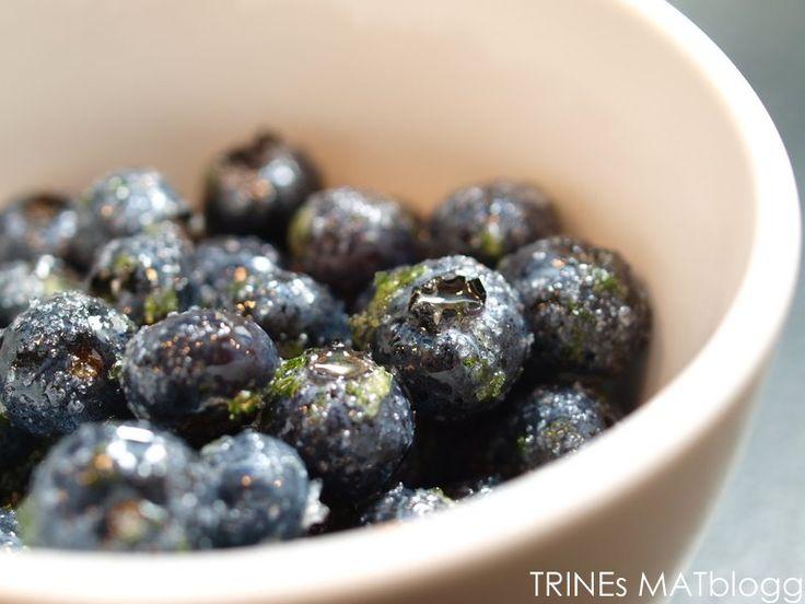 Panna cotta med limemarinerte blåbær