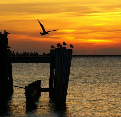 """Lake Pontchartrain Photograph by Stacey Suhm  You say """"lake."""" I say, """"playground."""""""