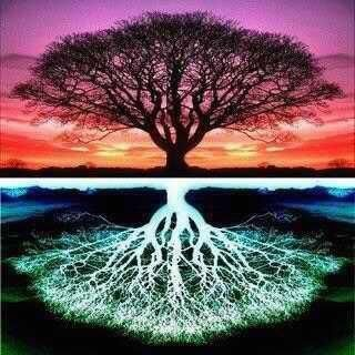 As Above, So Below. Irony or divine will that a tree, the very thing that gives us breath, with its branches and roots match the shape of our lungs?: Inspiration, Nature, Art, Trees, Tattoo, Photo, Tree Of Life