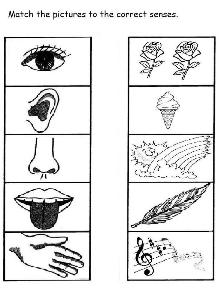 All Worksheets » Simple Machines Worksheets Grade 5