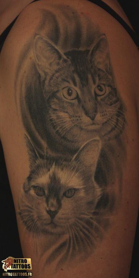 tatouage chat prix tatouage tatouages tattoos tattoo nitrotattoos tatouages pinterest