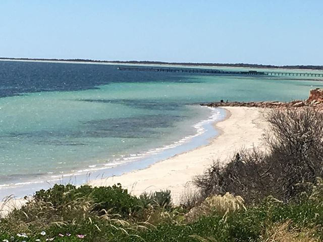 Moonta Bay - Snorkel in the day and relax in the afternoon while sipping your favorite drink at one of the beachside cafes in Moonta Bay. The clear turquoise waters, sandy beach, and the laidback vibe of this coastal town facing Spencer Gulf will make rethink your decision to leave. Its tourist-friendly appeal makes this small town a popular destination. Moonta town is located in the Yorke Peninsula, the place that offers many of the best scuba diving sites in South Australia.