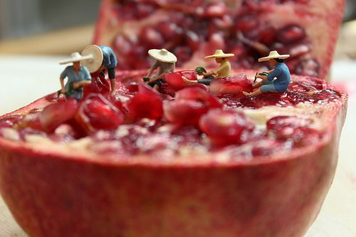 Miniature people art and macro lens photography Little People