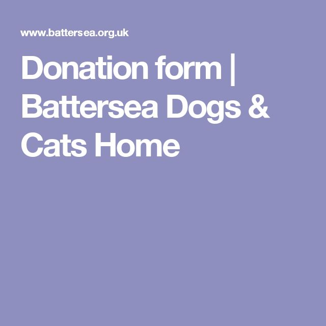 Donation form | Battersea Dogs & Cats Home