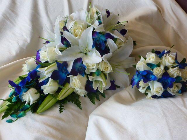Wedding Flowers Lilydale : Blue orchid wedding flowers lilydale