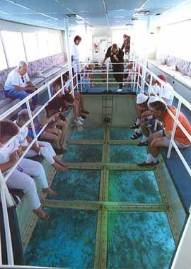 Take a ride in the glass bottom boat in Naples, Florida, USA