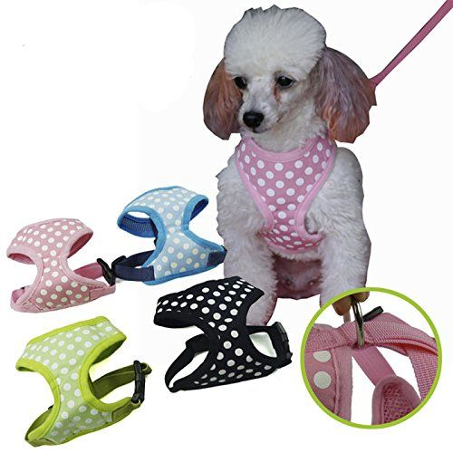 Cocogo Breathable Cute Polka Dot Design Pet Dog Harness Puppy Chest Vest with Leash * Details can be found by clicking on the image.