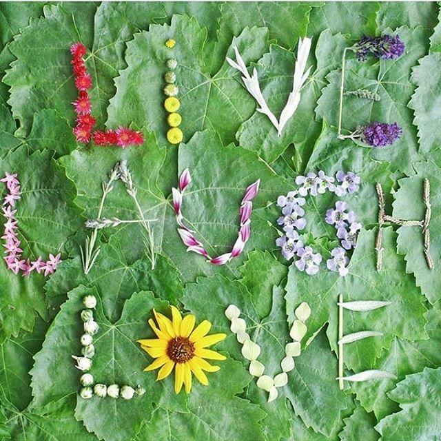 W O R D S  T O  L I V E  B Y  . .  @runnerkimhall . . . #greenbeauty #naturalskincare #botanicalbeauty #floralfix #thehappynow #liveinspired #livecolorfully #ecoluxe #minimalism #mindbodysoul #youthful #glowingskin #skincareroutine #beautyfinds #organic #fresh #indiebeauty #madeincanada #selfcare #flowers #herbalskincare #plantbased #abbeylanefarm #wildjasmine #healthyhappylife #ecofriendly #greenliving #toxinfree #greenlifestyle #discoverunder10k