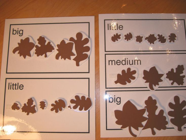 Great idea for sorting sizes in keeping with an autumn theme!
