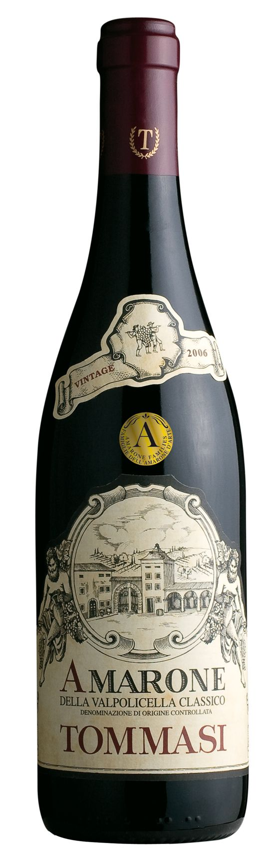 Awesome AMARONE !!!  Tommasi Amarone della Valpolicella Classico    http://ny-foodie.com/2013/01/26/greatest-hits-super-bowl-party-recipes-from-the-dude-abide/