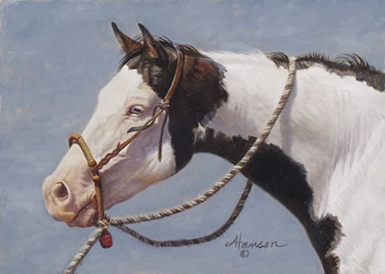 """Black and White on Blue - horse painting by Ann Hanson Oil ~ 5"""" x 7"""""""