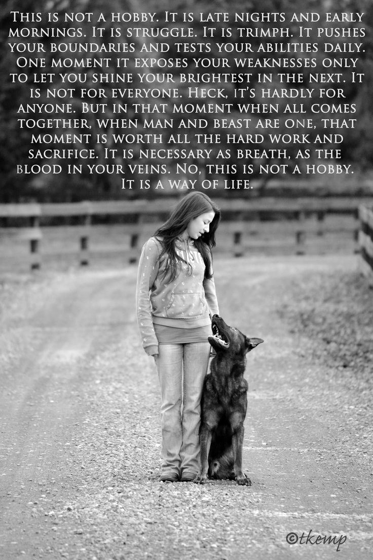 Train your dogs, socialize them, give them exercise daily, and boundaries. You will never find a more loyal friend. NL