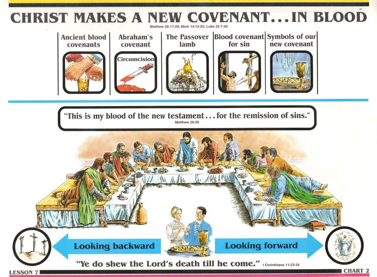 Search for Truth - Jesus Christ makes a New Covenant... In Blood