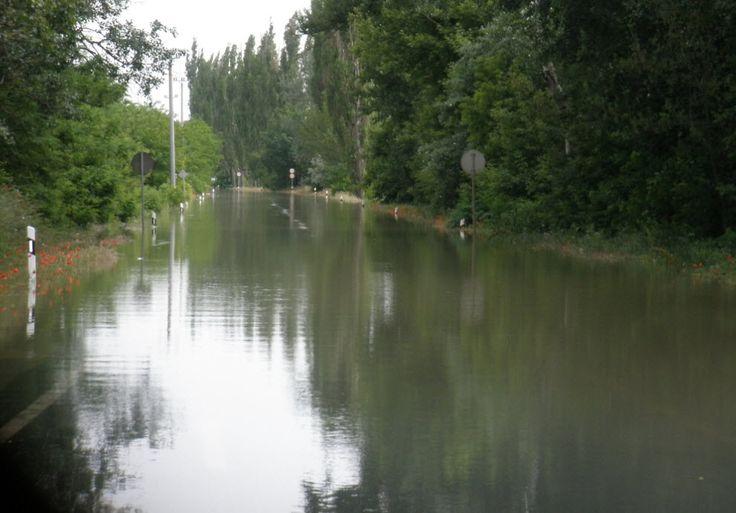 2013 nyara 2-es főút Vác és Sződliget között