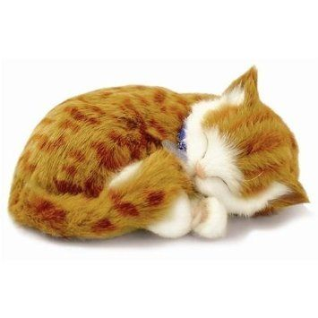 """Ginger Tabby """"Sleeping & Breathing"""" Kitten by Perfect/Precious Petzzz - New Soft Version"""