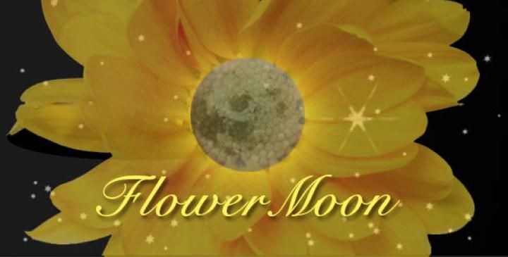 Flower Moon, Full Moon for May, named by colonists and Algonquin Indians.